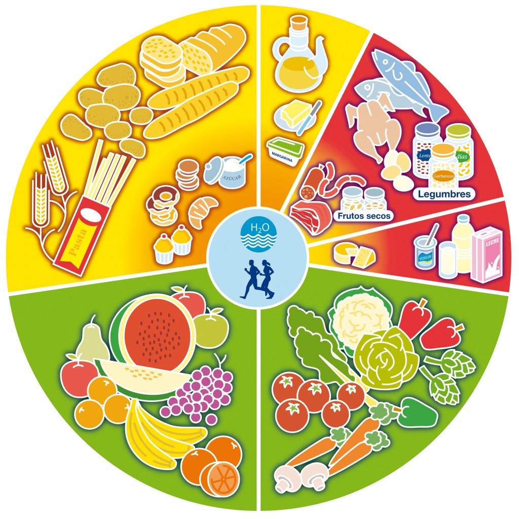 Roda dels aliments